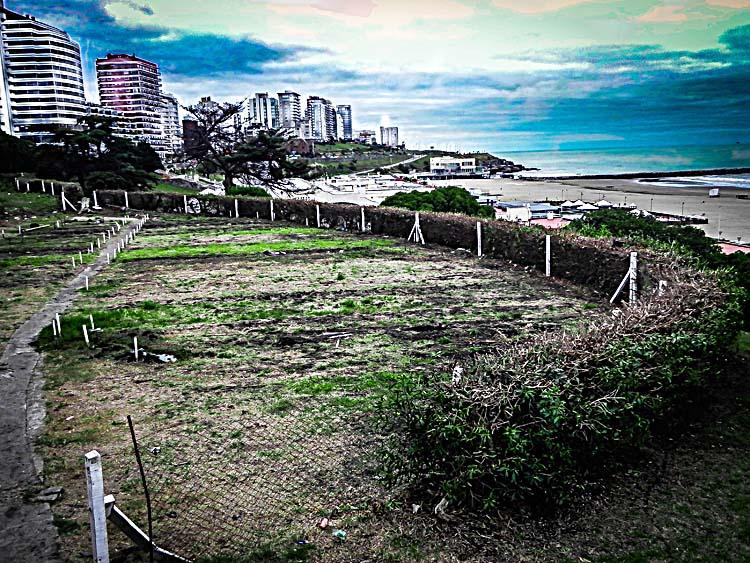 Reactivan el vivero de playa grande diario la capital de for Viveros en la plata